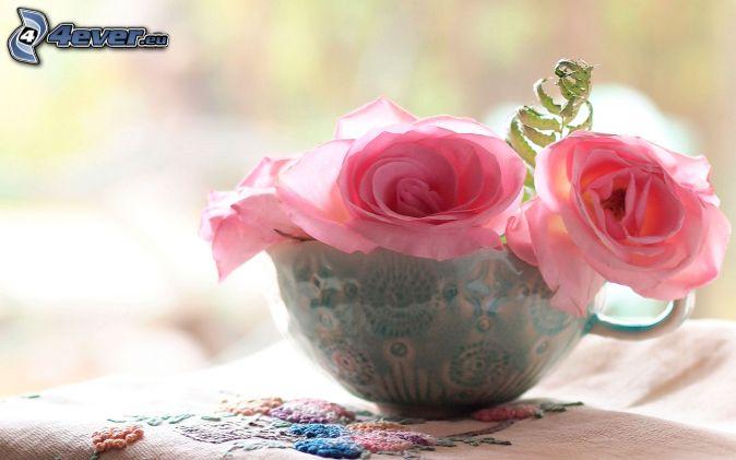 ružové ruže, šálka