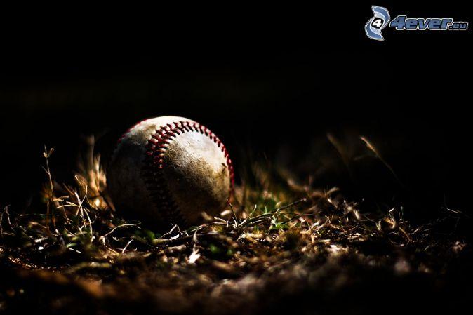 baseball, tráva