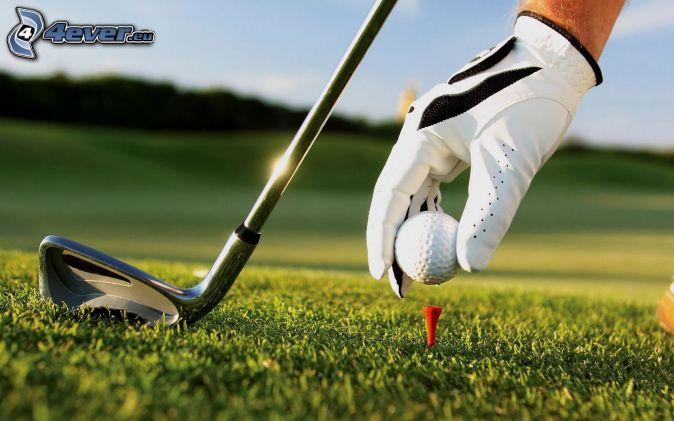 golf, golfová loptička, golfová palica, rukavice, trávnik