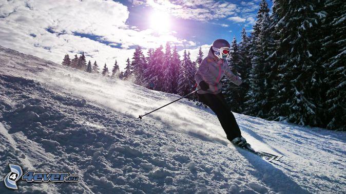 lyžovanie, lyžiar, zasnežený les, svah