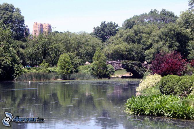 Central park , jazero
