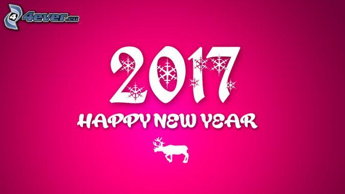 2017, happy new year, šťastný nový rok, sob, ružové pozadie