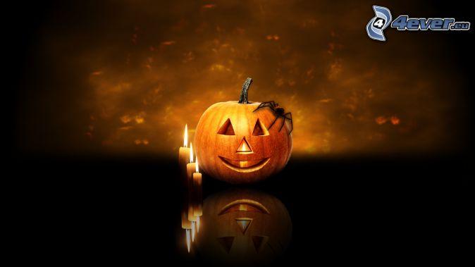 halloweenska tekvica, sviečky, pavúk, tma