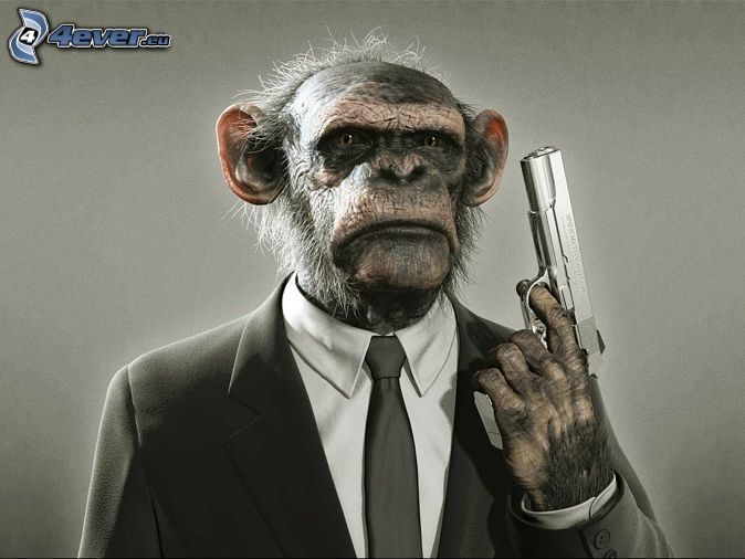 opica, pištoľ, oblek