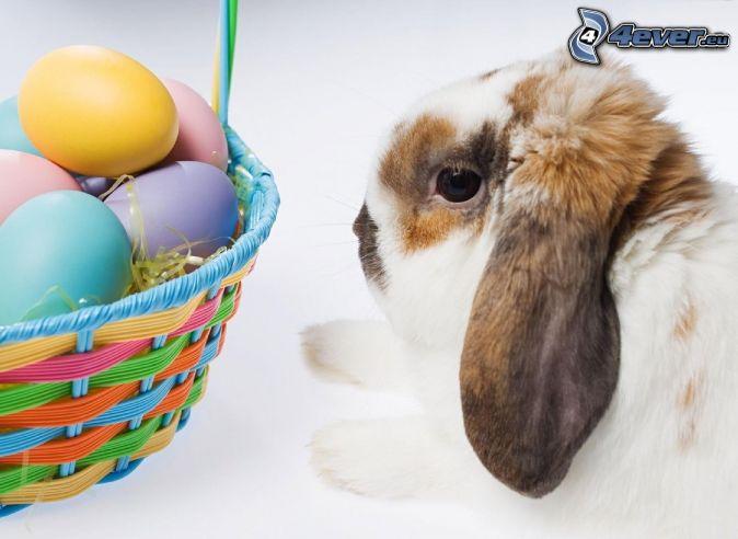 zajačik, vajíčka, košík