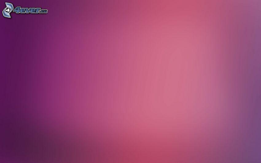ružové pozadie