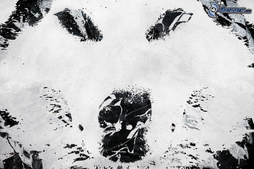 vlk, abstrakt
