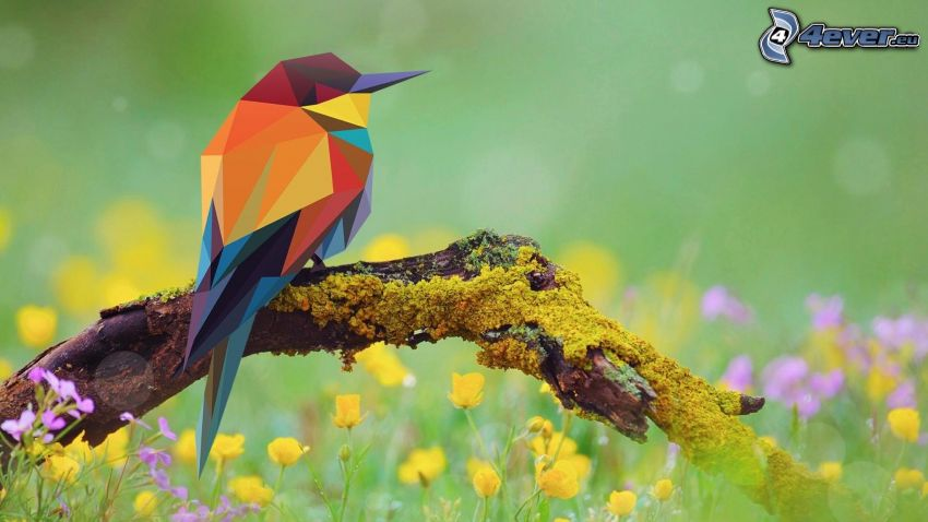 vták, abstraktné trojuholníky, konár, tráva, poľné kvety