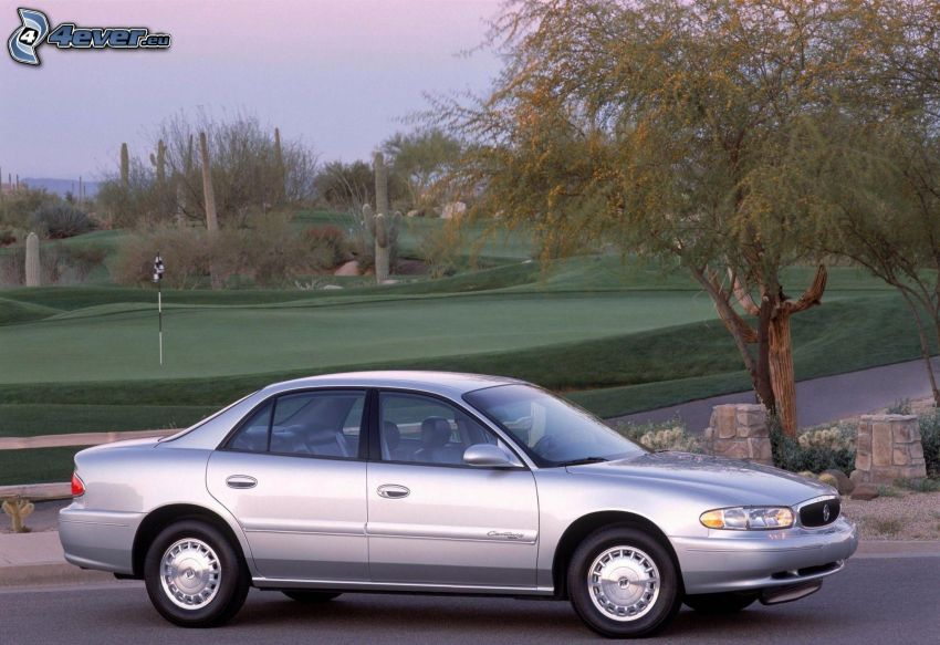 Buick Century, strom