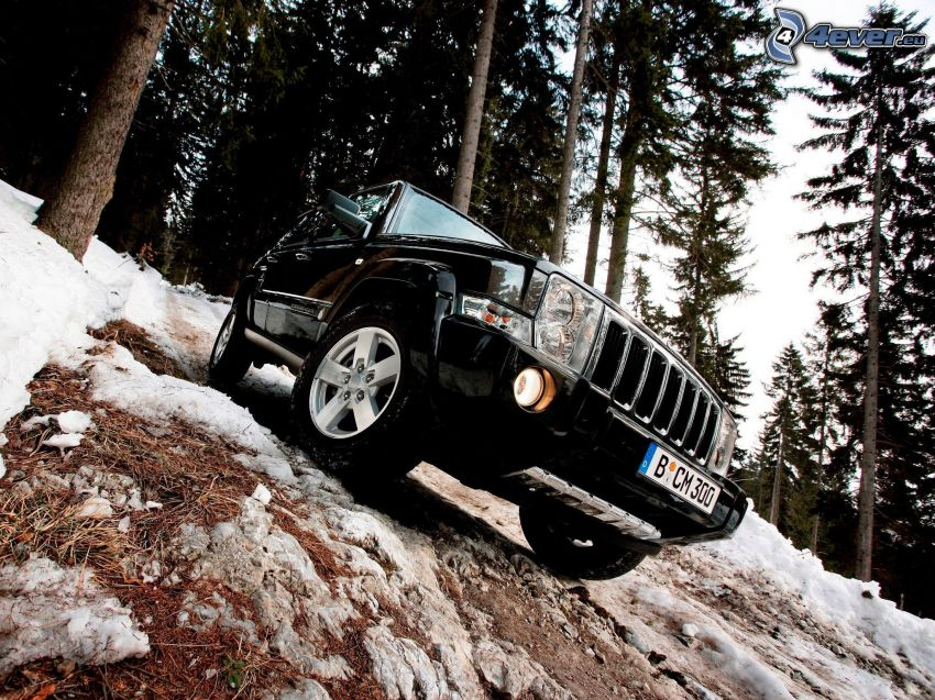 Jeep Comander, terén, zasnežený ihličnatý les
