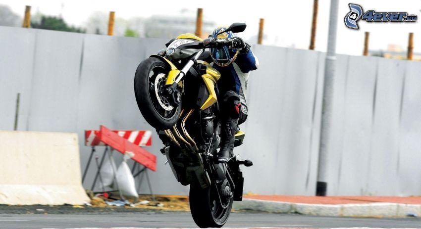 Honda CBR 1000, akrobacia, motorkár