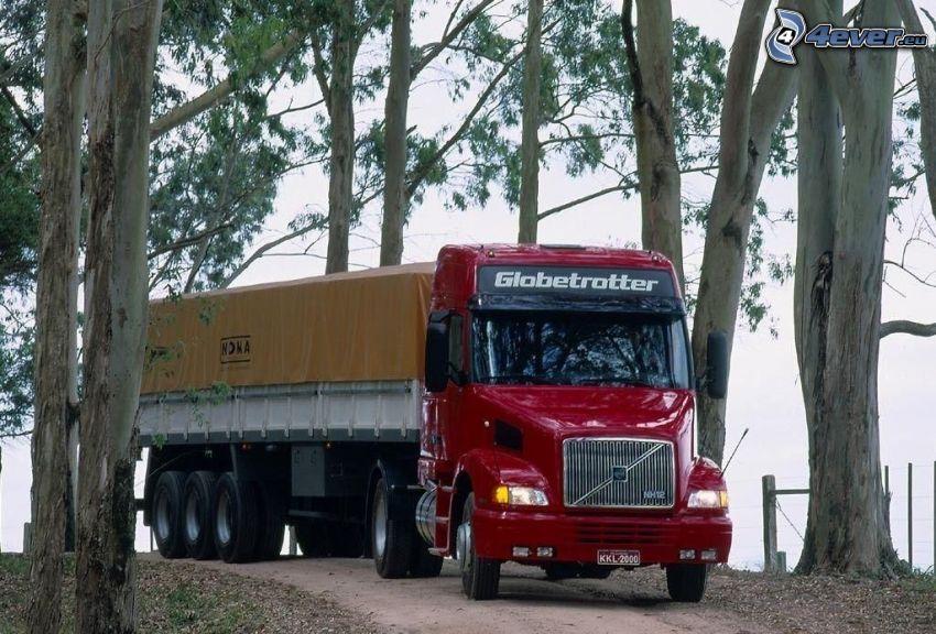 Volvo FH16, cesta, stromy