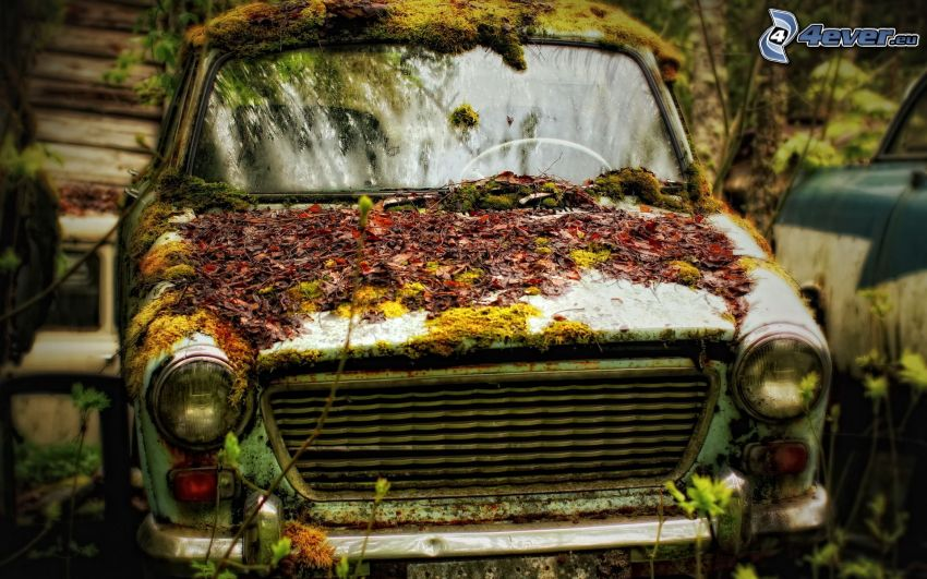 staré auto, jesenné listy