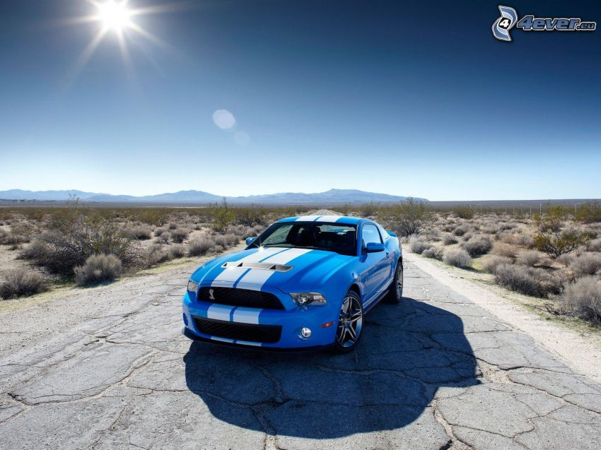 Ford Mustang Shelby GT500, cesta, vyschnutá stepná krajina, slnko