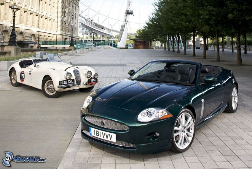 Jaguar XK, Jaguar, kabriolet, veterán, dlažba