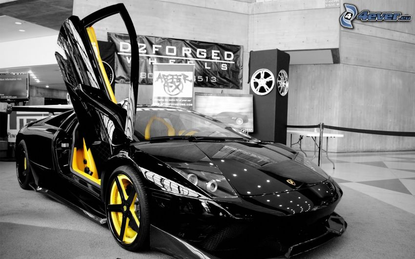 Lamborghini, dvere