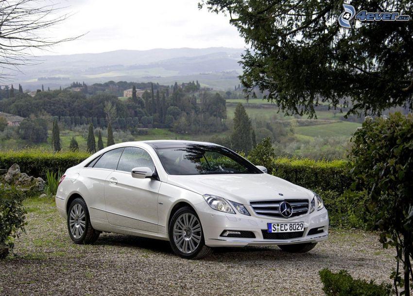 Mercedes-Benz E, výhľad na krajinu, stromy