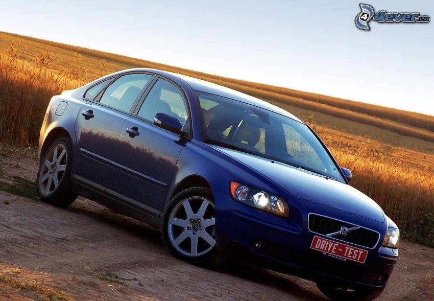 Opel Astra, dozreté pšeničné pole