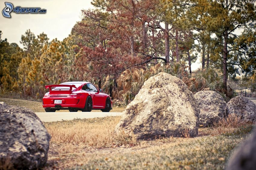 Porsche 911 GT3, balvany, ihličnaté stromy