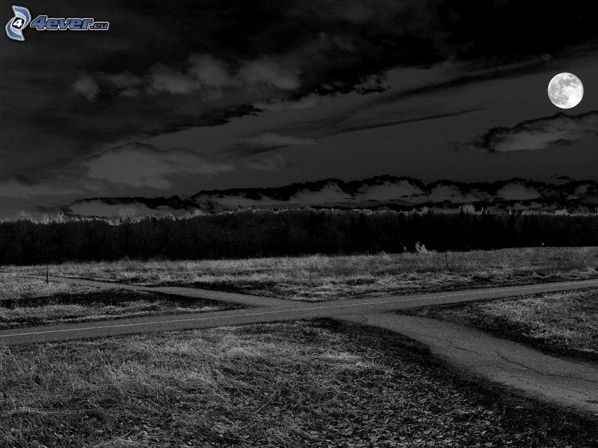 cesta, križovatka, mesiac, noc, čiernobiela fotka