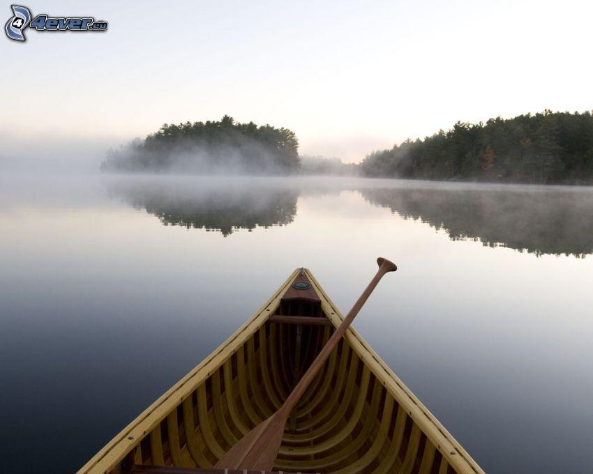 kanoe, rieka, stromy