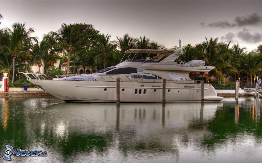 luxusná loď, palmy