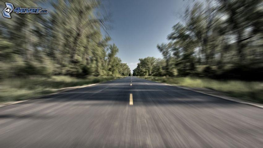 rovná cesta, rýchlosť