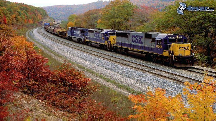 vlak, koľajnice, farebné stromy