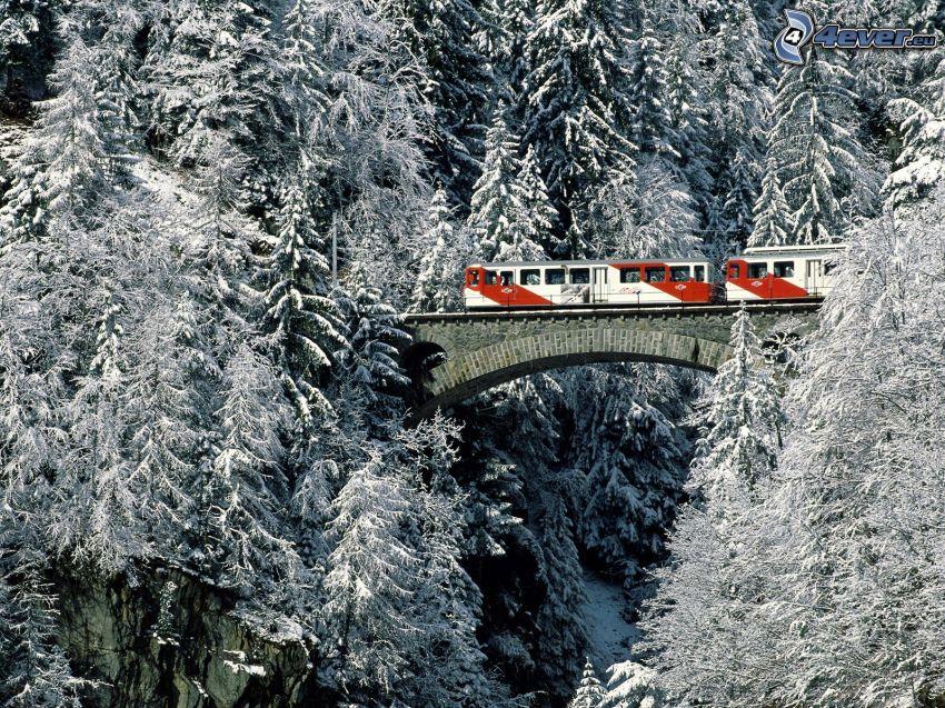 vlak, železničný most, zasnežené stromy