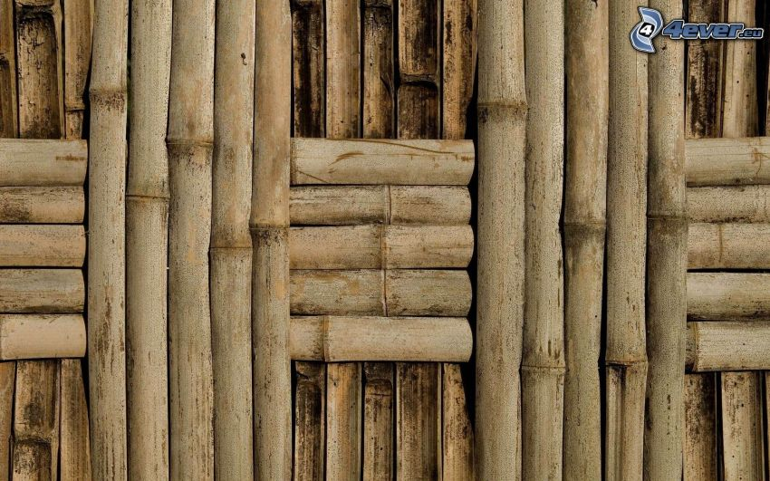 bambusové drevo