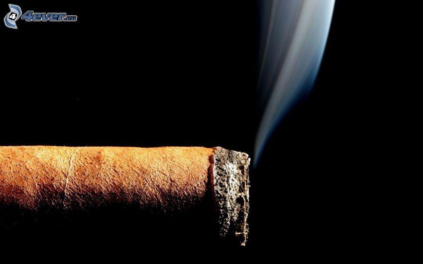 cigara, dym