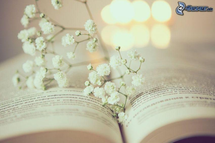 kniha, biele kvety