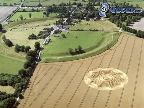 kruhy v obilí, pole, dedinka
