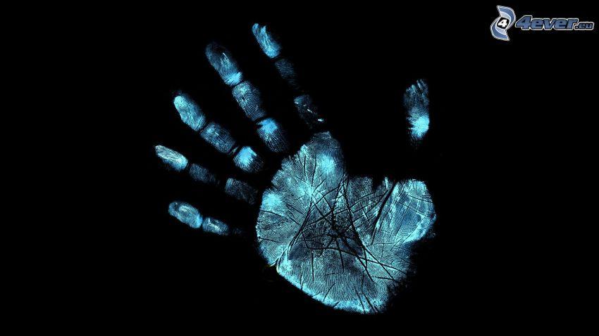 odtlačok ruky, dlaň