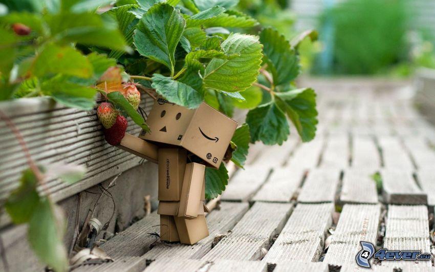 papierový robot, jahody, drevo