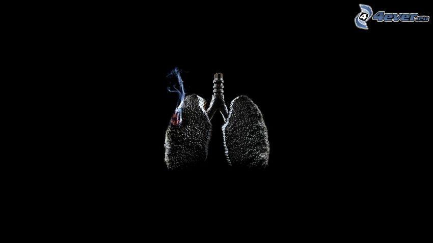 pľúca, dym