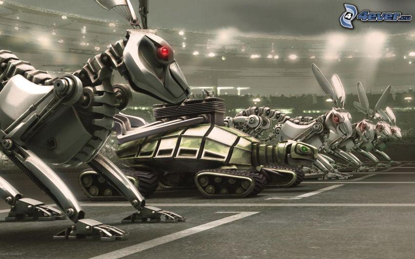 roboty, preteky, zajace, korytnačka