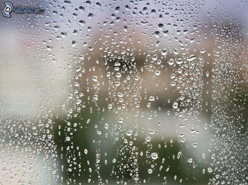 zarosené sklo, kvapky vody
