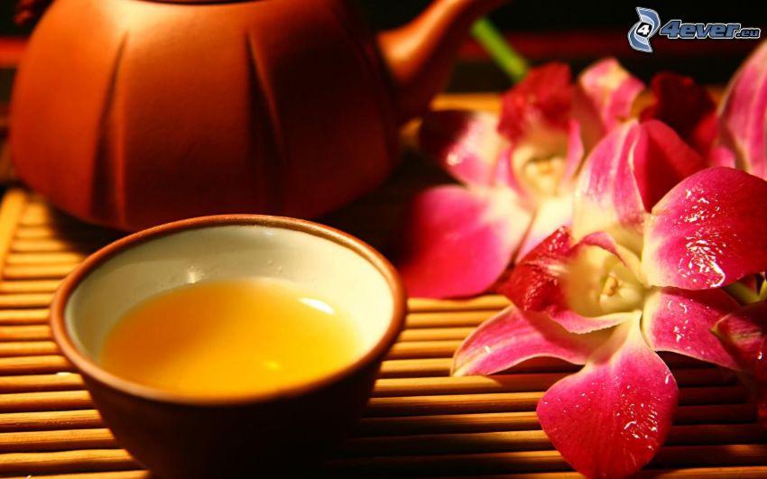 čajník, šálka čaju, orchidey