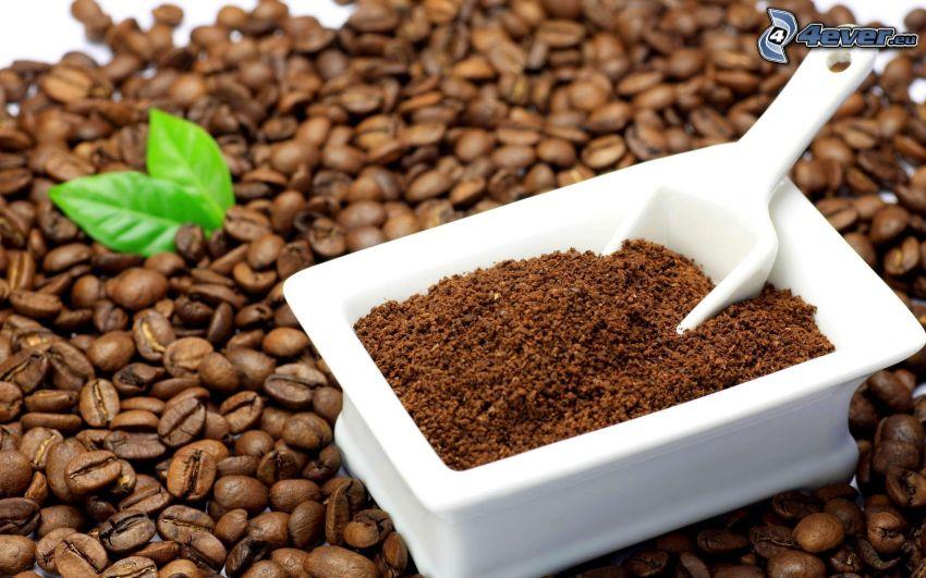 kávové zrná, káva