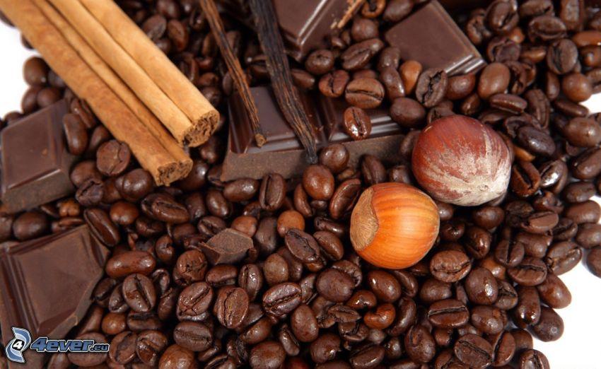 kávové zrná, lieskové orechy, čokoláda, škorica