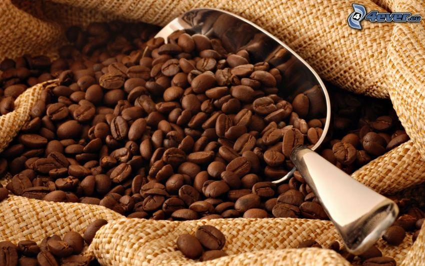 kávové zrná, lopatka, vrece