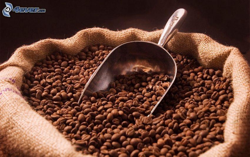 kávové zrná, vrece, lopatka