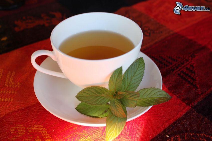 mätový čaj, šálka čaju