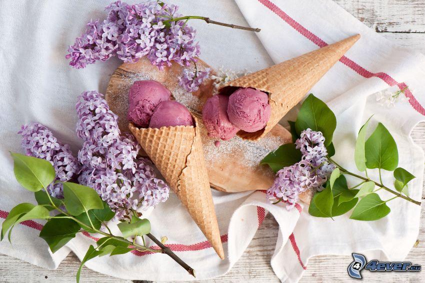 zmrzlina, kornútky, orgován