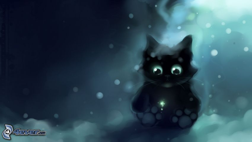 čierne mačiatko
