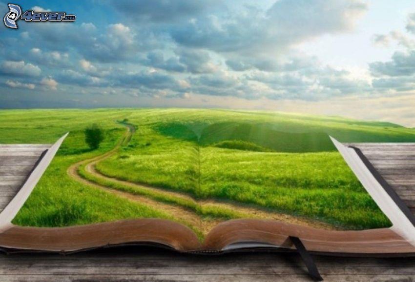 kniha, cesta, lúka, oblaky