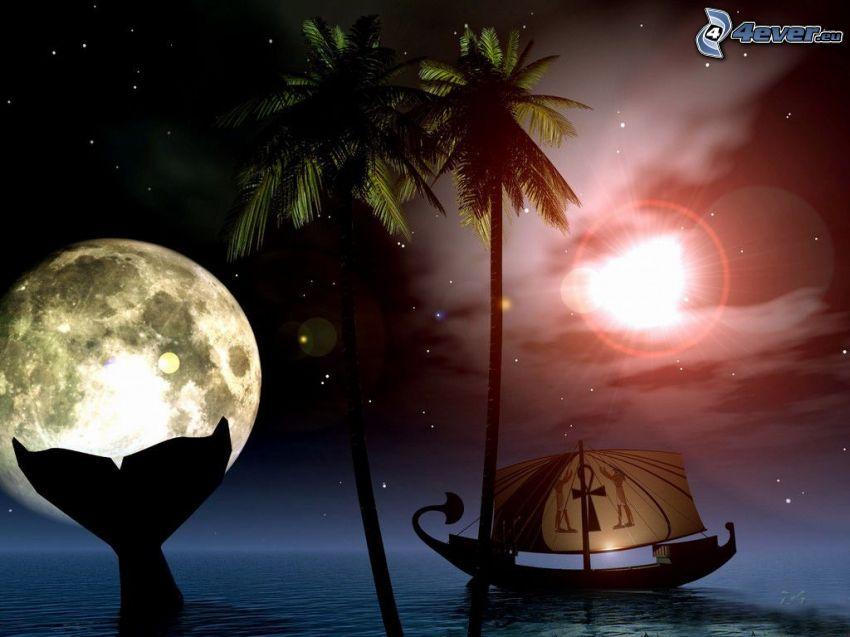 noc, mesiac, more, palma, plachetnica, siluety