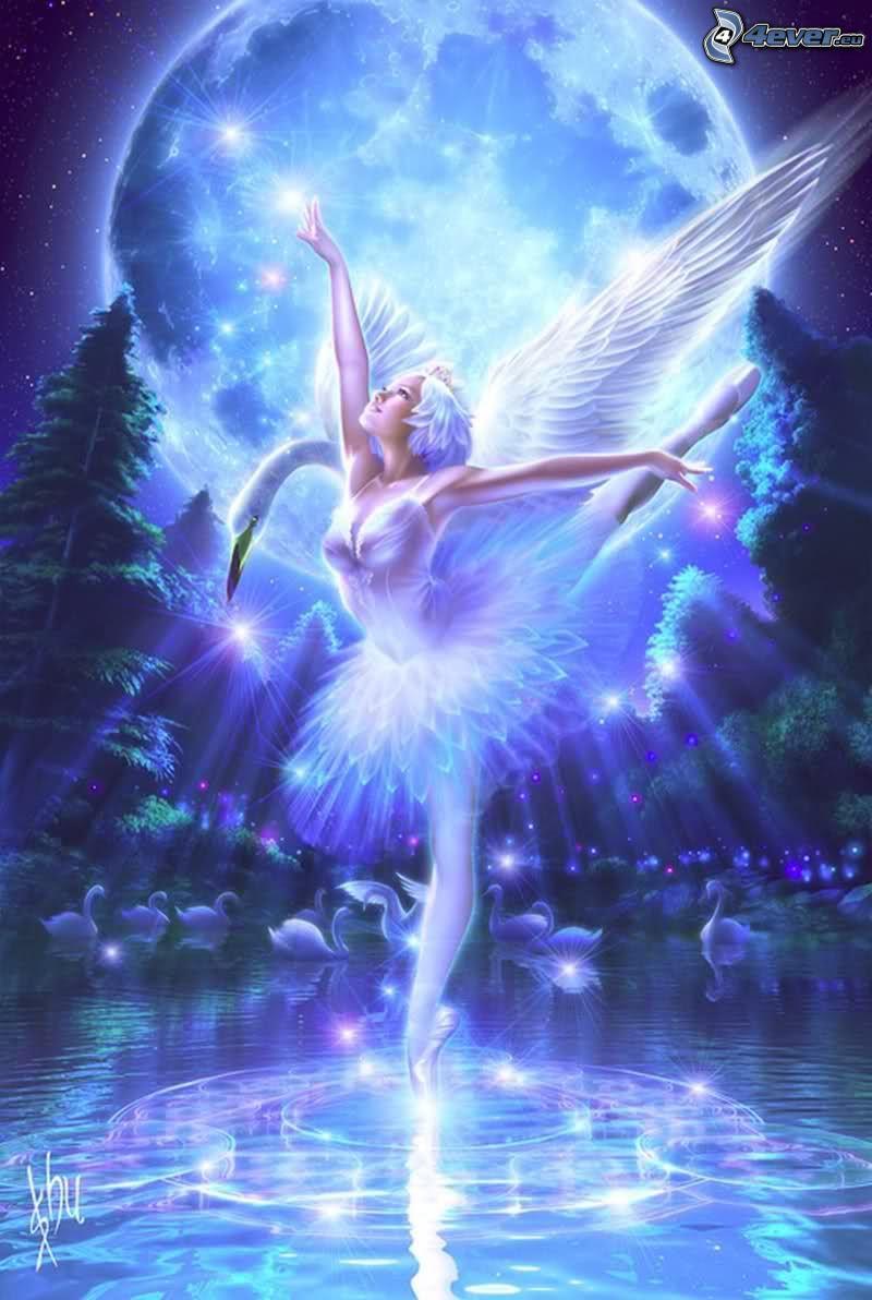 nočná víla, krídla, balet, mesiac, voda, labuť