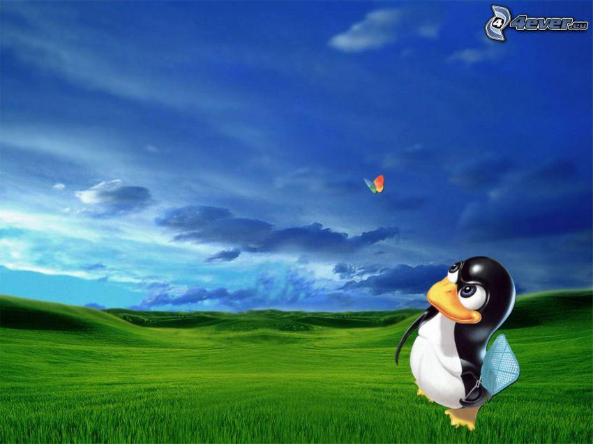 tučniak, Linux